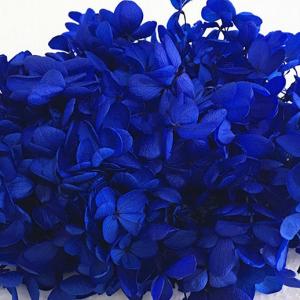 Bloemen - Gedroogde Hydrangea - Donker Blauw (+/- 1 gram)