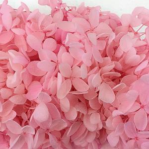 Bloemen - Gedroogde Hydrangea - Roze (+/- 1 gram)